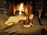 Resting by the fire, so cozy♥
