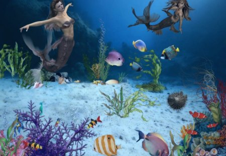 Underwater Magic - Water, Fish, Coral, Mermaids, Aquarium, Underwater, Fantasy