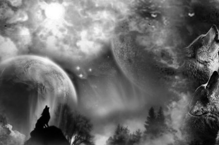 Wolf Art Fantasy Abstract Background Wallpapers On