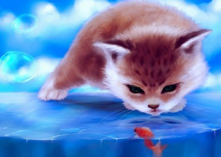 Cute Cat 3d And Cg Abstract Background Wallpapers On Desktop
