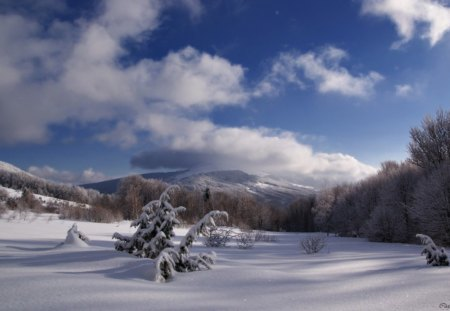 Winter weather - mountains, snow, winter, landscape