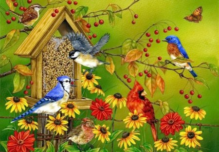 Spring birds - colorful, birds, friends, song, branches, blooming, blossoms, sing, flowers, nice, summer, nature, beautiful, lovely, daisies, spring, pretty, house, home, family, leaves