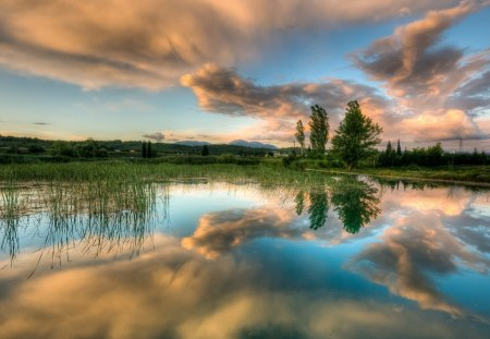 wonderful mirrored pond - pond, grass, reflection, trees, clouds