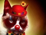 Grumpy the Clown