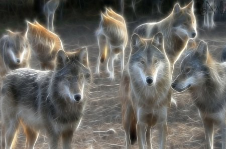 WOLVES OF FRACTAL - wonderful, splendid, beautiful, howl, seasons, canine, glanced, frosty, fractal, wild, love, beauty, forests, magnificent, animals, art, lovely, hunters, winter, predator, cute, snow, magical, dog lover, nature, wolf, wolves, frozen, dogs