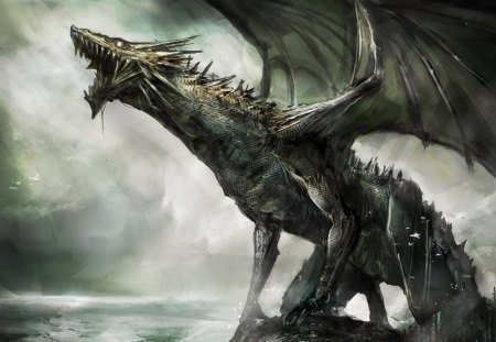 Black Dragon - fire, cool, mean, dragon
