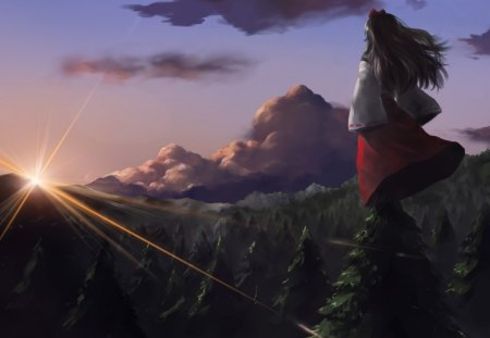 watching sunrise - mountain, tree, girl, pine, anime, sunrise