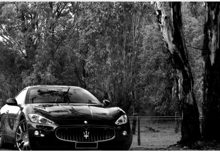 Black Maserati Maserati Cars Background Wallpapers On