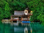 Jamaica scenery green trees the lake-the house