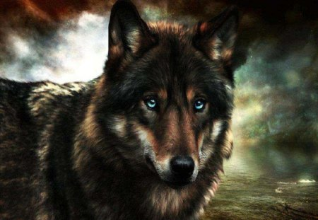Blue Eyes - fantasy, wolf, abstract, animals, dogs