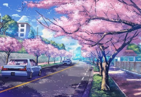 Cherry blossoms other anime background wallpapers on - Anime cherry blossom wallpaper ...