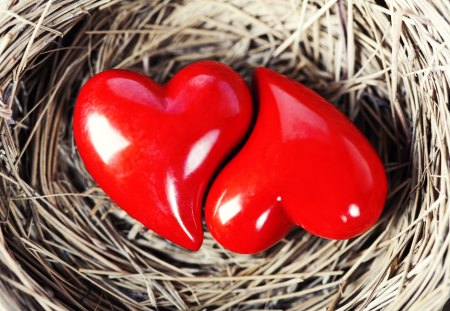 Love - hearts, photography, valentines day, heart, red, love