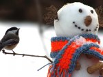 Tit and snowman