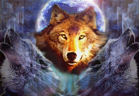Wolf Abstract - wolves, fantasy, abstract, animals