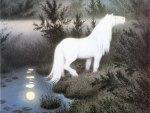 Mystic white horse
