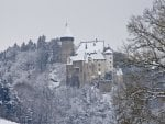castle on a grey winter day