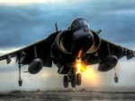 harrier taking off hdr