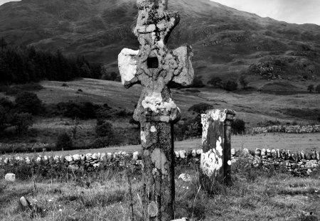 Celtic Cross - north, forest, gallic, celts, elves, celtic cross, nordic, barbarian, myth, pagan, nature, paganism, celtic, viking, cross, wood