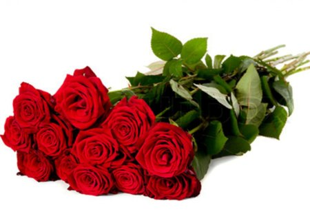Red Roses For Friends DN - bouquet, love, flowers, romance, friends, special, red roses, beautiful, moments