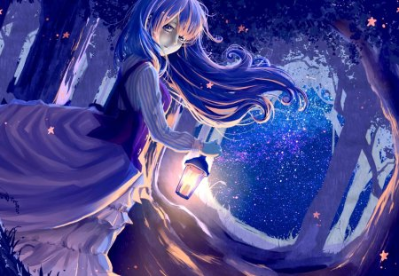 YOUNG LADY with LANTERN - forest, dress, girl, wind, Art, ryouya, night, light