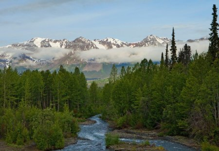 Gorgeous Alaskan Landscape In Summer