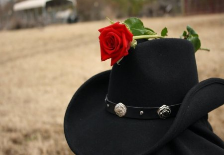 3eff4b2771f The rose and the black hat - Photography   Abstract Background Wallpapers  on Desktop Nexus (Image 1368836)