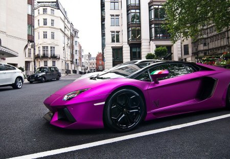 Hot Purple Lamborghini Lamborghini Cars Background Wallpapers On