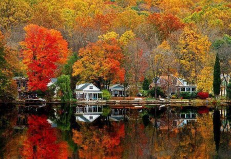 fall - fall, nature, water, lake