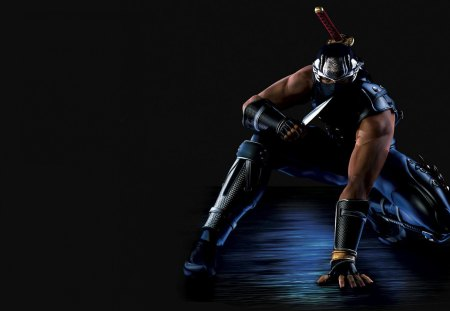 Ryu Hayabusa Other Video Games Background Wallpapers On