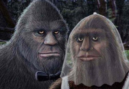 Mr and Mrs BigFoot - oregon, sasquatch, fun, you-know- who