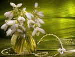 snowdrops and pearls