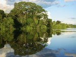 Pacaya Samiria National Peserve Amazonia Peru