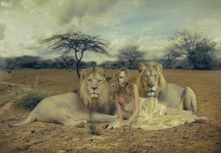 Lady Of The Wild - fantasy, abstract, woman, cats, animals, lions