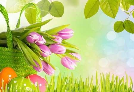 Happy Easter - pretty, grass, sunny, easter, beautiful, leaves, bokeh, green, flowers, beauty, tulips, pink, spring time, easter eggs, spring, pink tulips, basket, sunshine, nature, happy easter