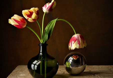 Still Life - pretty, lovely, vase, beautiful, still life, photography, flowers, beauty, nature, tulips, tulip