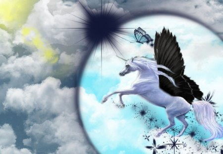 unicorn butterfly - fantasy, winged, unicorn, flight