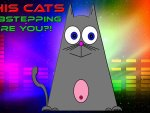 DubStepping cat HD