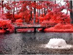 ☀Red Bridge in Summer☀