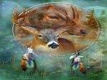 Deer Shield