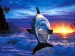 *** Sunset and dolphin ***