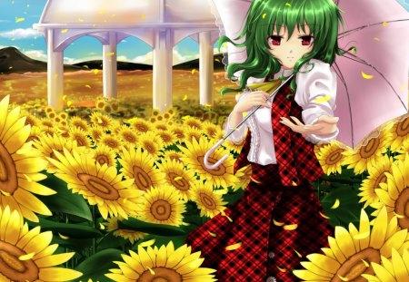 Sun Flower Field Other Anime Background Wallpapers On Desktop Nexus Image 1390724