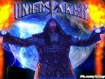 undertaker 2013,