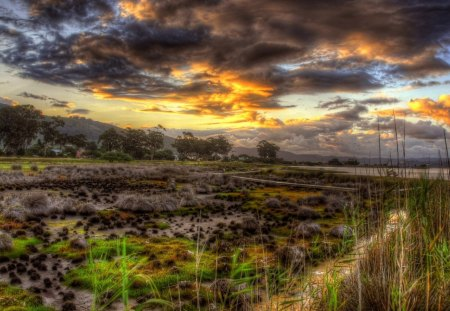beautiful wetlands landscape hdr - grass, mountains, wetland, village, hdr, trees, clouds