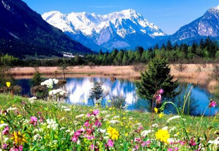 Nature At Its Best Mountains Nature Background Wallpapers On Desktop Nexus Image 1394302