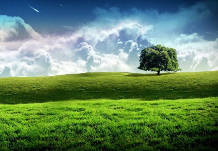 Alone with world - lovely, landscape, green, beautiful, clouds, photo, nature, tree
