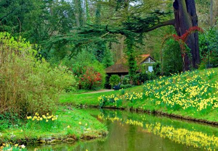 Spring Garden Flowers Amp Nature Background Wallpapers On