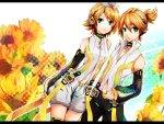 ~Len & Rin Kagamine~