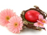♥ Easter Time ♥