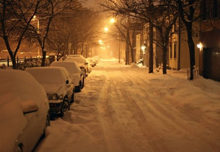 Wintery Night - Wintery Night, snowy night, winter storm, snowstorm, storm, winter night
