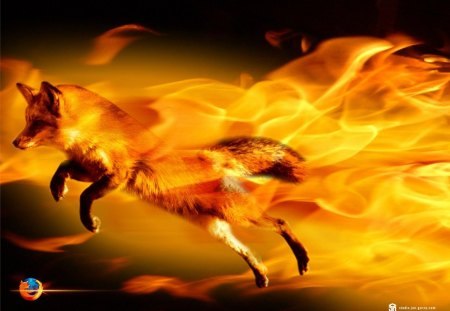 Flaming Firefox - red, zorro, power, a, technology, flaming firefox, fire, fox, digital, firefox